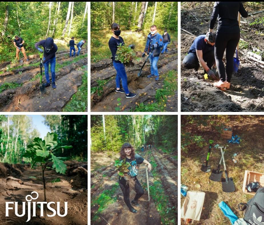 Filary działań społecznych Fujitsu.